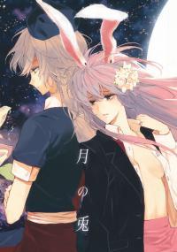 Touhou - Rabbit of the Moon (Doujinshi)