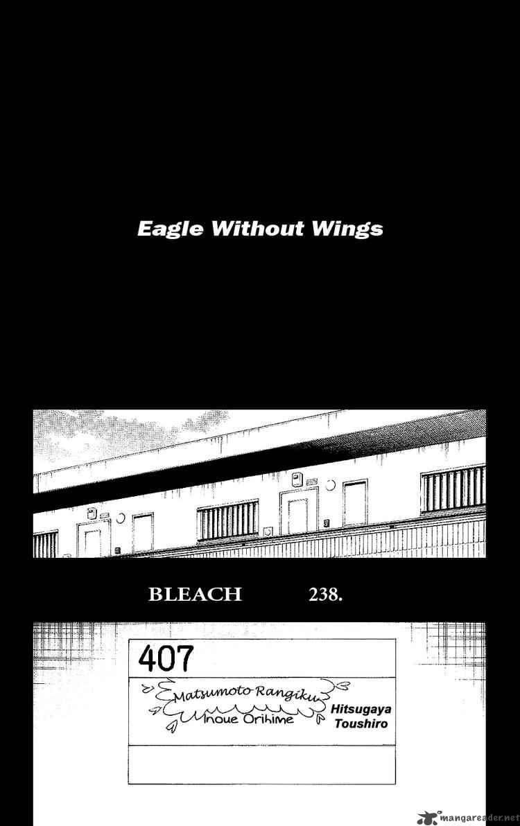 Bleach 238